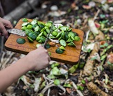A Beginner's Guide On How To Make Compost At Home