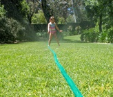 How To Water Your Garden Efficiently in Summer