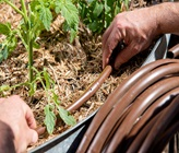 The Best Irrigation Tips and Tricks For Your Garden