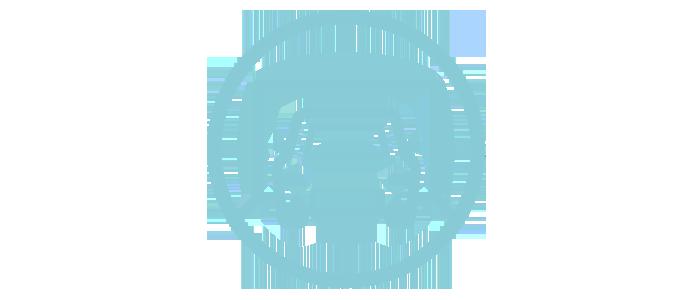 Cars Per Driveway