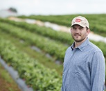 FlowControl Tape Grows Strawberry Yield and Profitability