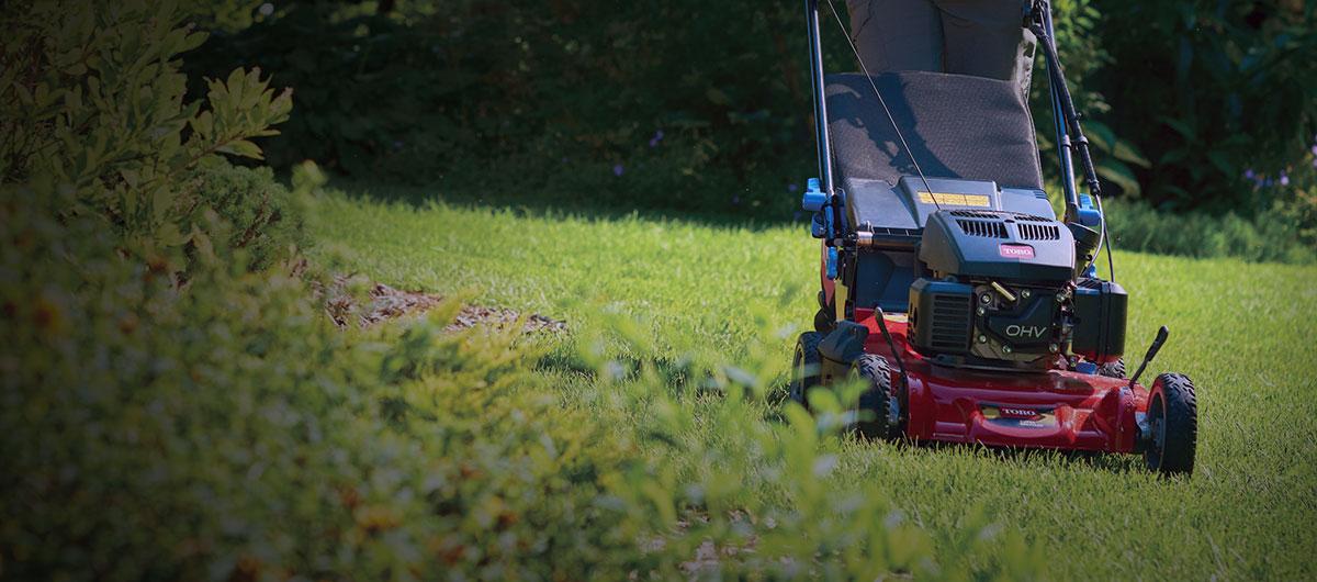 Lawn Mowers Walk Behind Push Self Propelled Electric